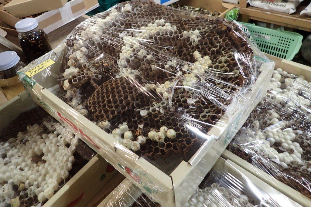 オオスズメバチの巣。食用に販売されている、かなり高価なナマモノだ